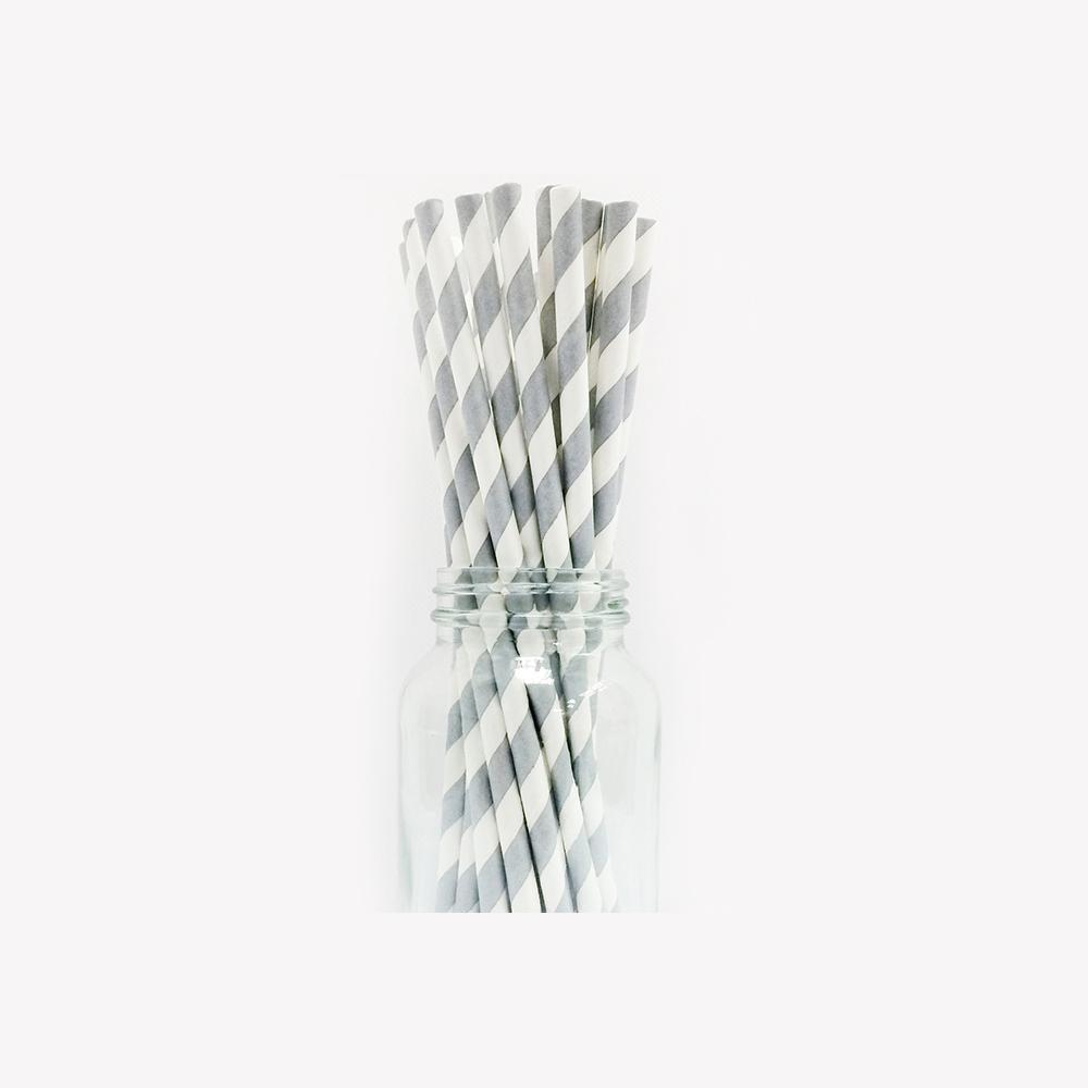 Stripe Paper Straws - Muddle Me